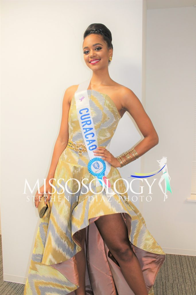 pageantfame.com6e2f9 IMG 3681 683x1024 3aec4481a1701bf34b6f3702b93955dfab1b71fe - Who stood out during a Miss International 2017 acquire party?
