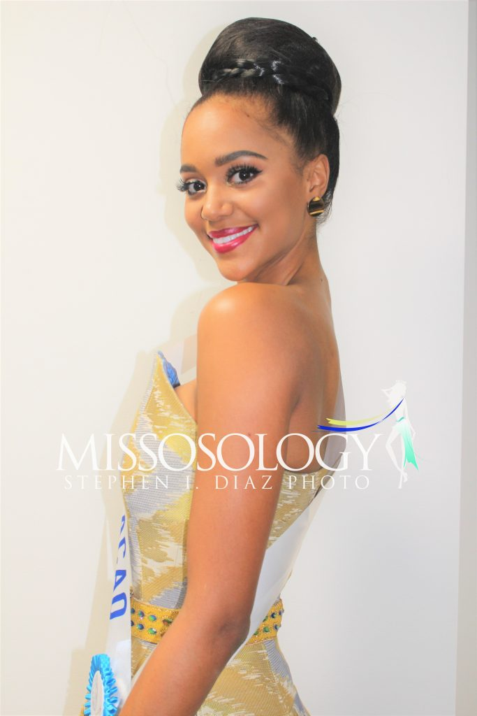 pageantfame.com7db93 IMG 3682 683x1024 9cd7549e13d5e4f8009673dc750d94a94b6d050e - Who stood out during a Miss International 2017 acquire party?