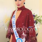 pageantfame.come9d6c IMG 3687 150x150 8edaaecbbf2b2154c1fcac7c197138955182dbcc - Who stood out during a Miss International 2017 acquire party?